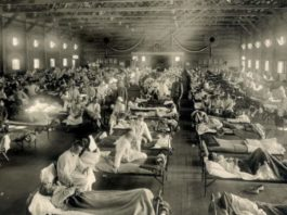 HOPE AND FEAR: HOW PANDEMICS CHANGED THE WORLD (image - Foxtel)