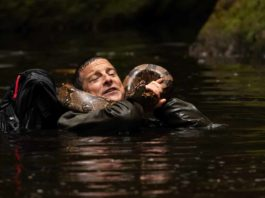 Animals on the Loose: A You vs.Wild Movie: Bear Grylls in Animals on the Loose: A You vs.Wild Movie.